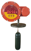Float & Dial Gauge